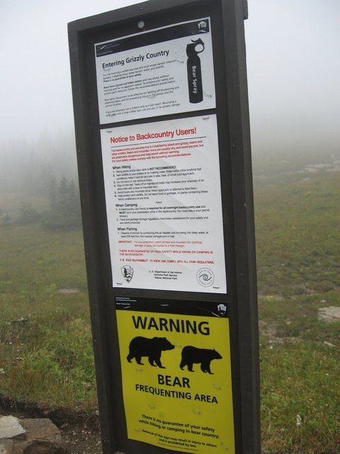 Bear Frequenting Warning