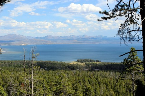 Lake Yellowstone from the Elephant's Back Trail.