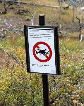 Sign of the times: No drones! in Yellowstone